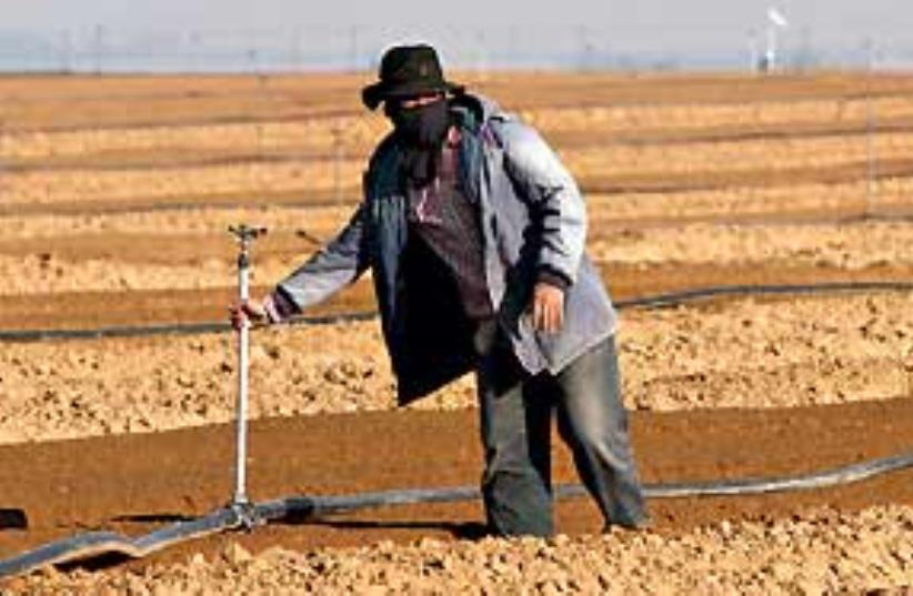 foreign worker311 (photo credit: Ariel Jerozolimski)