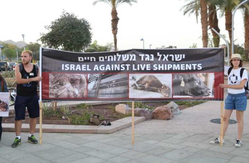 Animal rights protest in Elilat (photo credit: YOAV BEN-DOV)