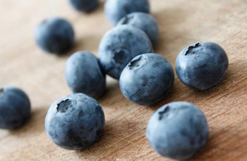 Blueberries (photo credit: INGIMAGE)