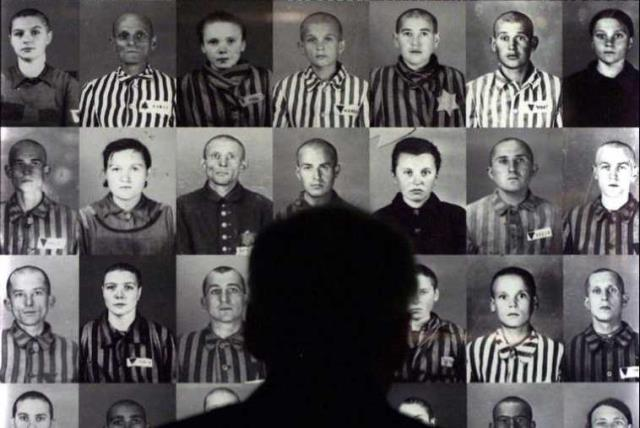 A man looks at photographs of Hungarian Jews held at the Auschwitz Concentration Camp during World War II (photo credit: REUTERS)