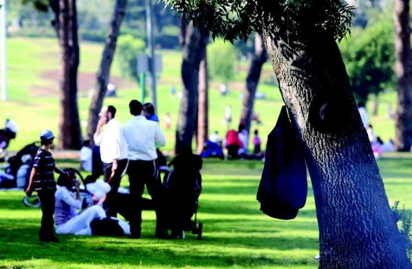 Famille haredite au parc (photo credit: MARC ISRAEL SELLEM/THE JERUSALEM POST)