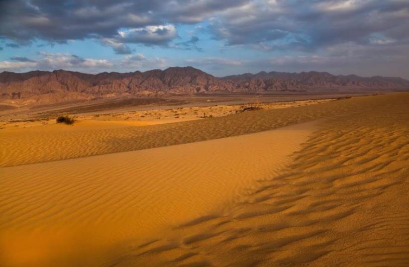 Samar sands region in the Arava (photo credit: INPA)