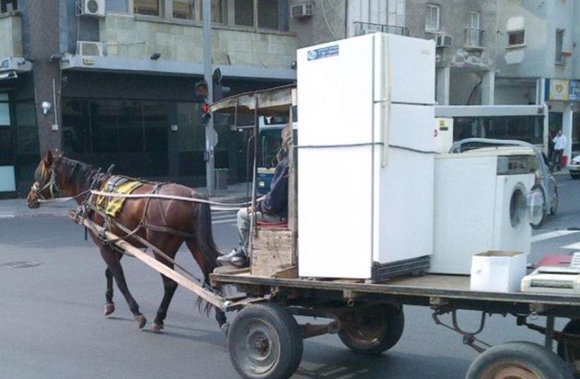 OPERATORS OF animal-drawn carts (photo credit: HAKOL CHAI)