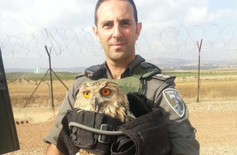 Border Police officer with injured owl (photo credit: POLICE SPOKESPERSON'S UNIT)