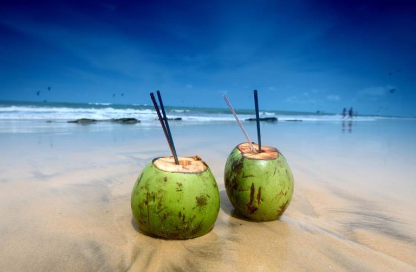 Tropical vacation [Illustrative] (photo credit: INGIMAGE)