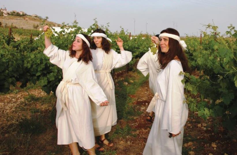 The annual Dancing in the Vineyard biblical festival. (photo credit: PR)