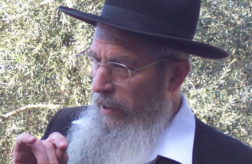 Rabbi Yisrael Ariel (photo credit: Wikimedia Commons)
