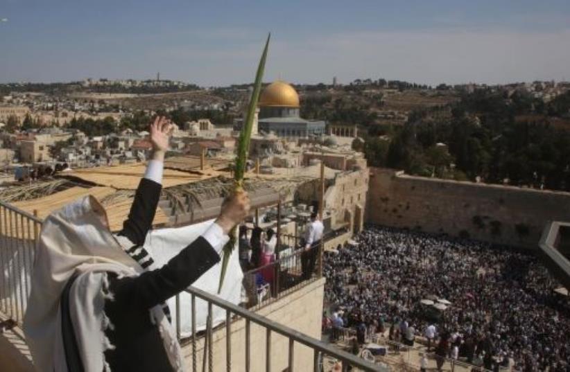 Man holding lulav. (photo credit: MARC ISRAEL SELLEM)