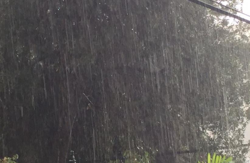 First winter rain in Israel (photo credit: YONATAN HALALI)