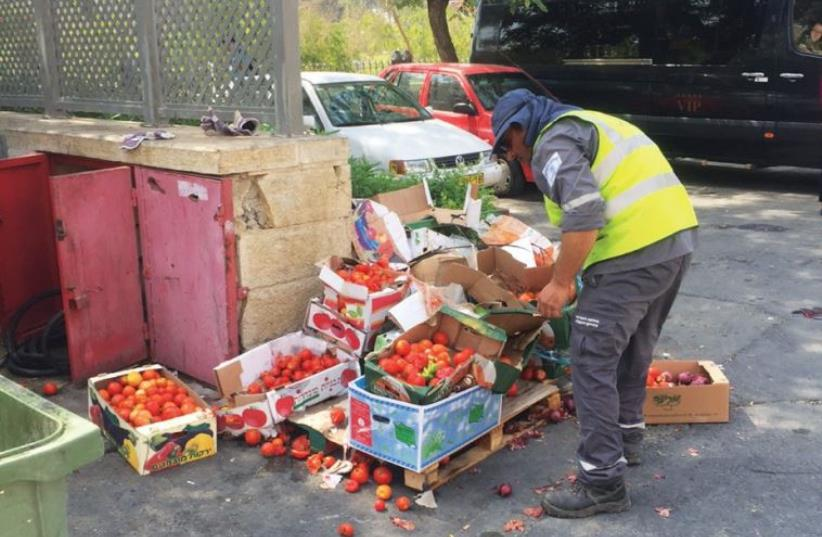 A GARBAGEMAN sifts through tomatoes that were discarded in Jerusalem. The country has seen an unprecedented rise in prices. (photo credit: Courtesy)