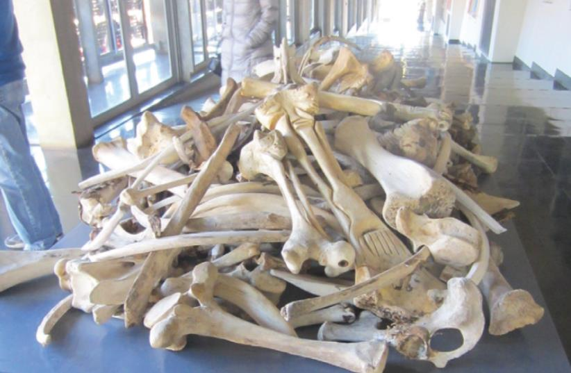 A PILE of animal bones, by Pitika Ntuli on display at Constitution Hill, is called 'Gaza.' (photo credit: CHAIM CHESLER)