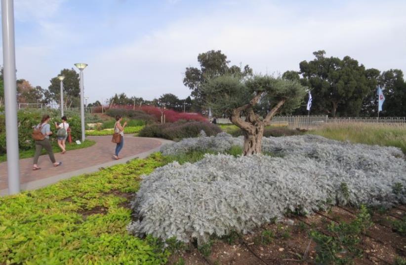 Fred and Linda Waks Botanical Garden Inaugurated in Akko (photo credit: KKL-JNF)