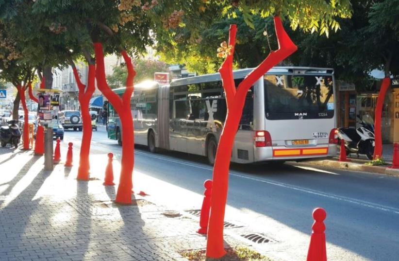 Wrapping trees in color on Emek Refaim Street (photo credit: TAMAR KLEIN)