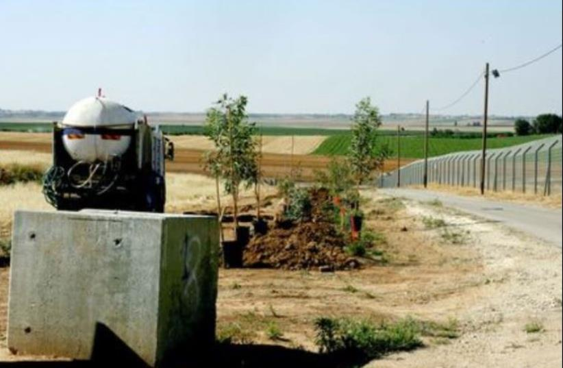 Trees planted along the Gaza security fence (photo credit: AMNON GUTMAN/KKL ARCHIVES)