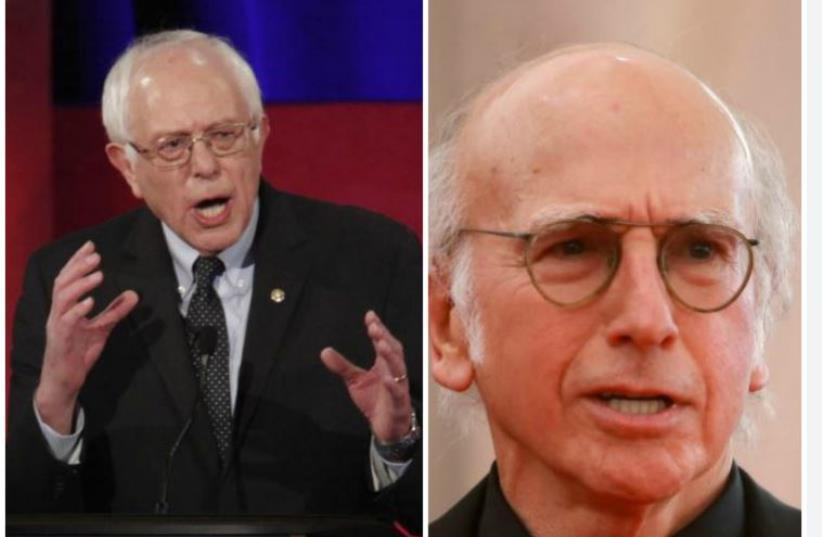 Bernie Sanders and Larry David  (photo credit: REUTERS)