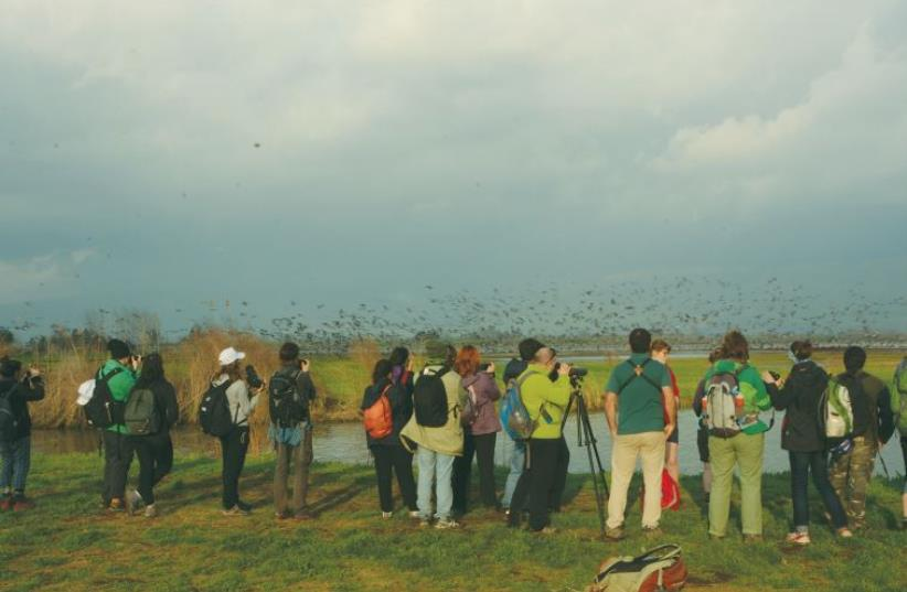 MEMBERS OF FIVE European environmental groups visit the Hula Valley last week (photo credit: URI ELIYAHU/SPNI)
