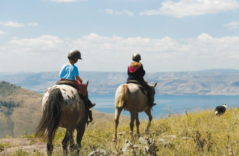 Ramot Ranch  (photo credit: MICHAEL MURGRAFF)