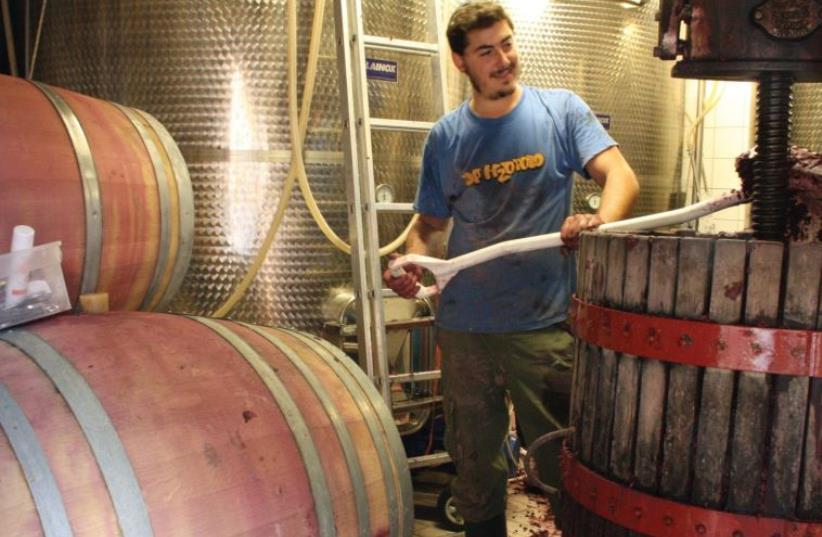 Eli Gauthier at his Italian winery. (photo credit: Courtesy)