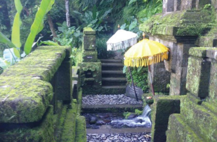 THE SACRED SPRING at the Como Shambhala Estates, nearly 10 hectares of land above the sacred Ayung River, surrounded by waterfalls, lush forest and mist rising from the gorge below. (photo credit: JANE MEDVED)