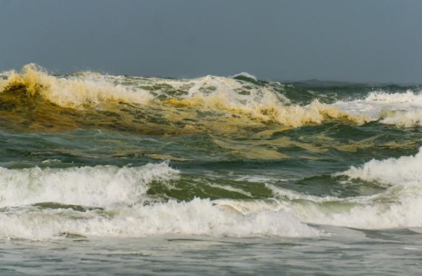 Yellow water following the sewage spill at Palmahim Beach (photo credit: MOSHE KOSTI / ZALUL)