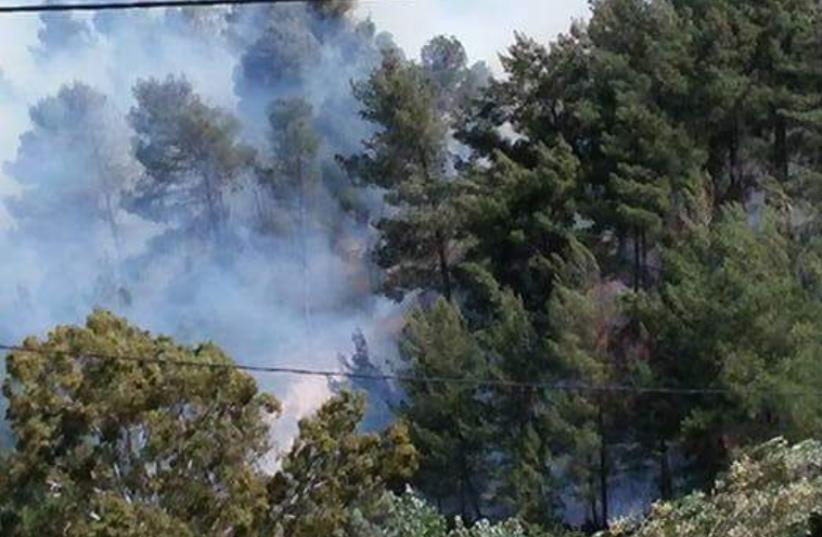 Fire breaks out in the North (photo credit: Courtesy)