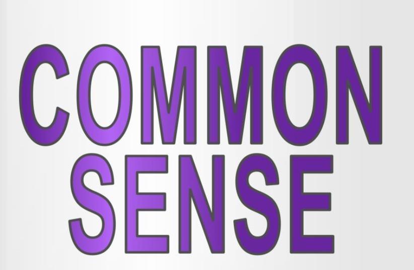 Common sense (photo credit: ING IMAGE/ASAP)