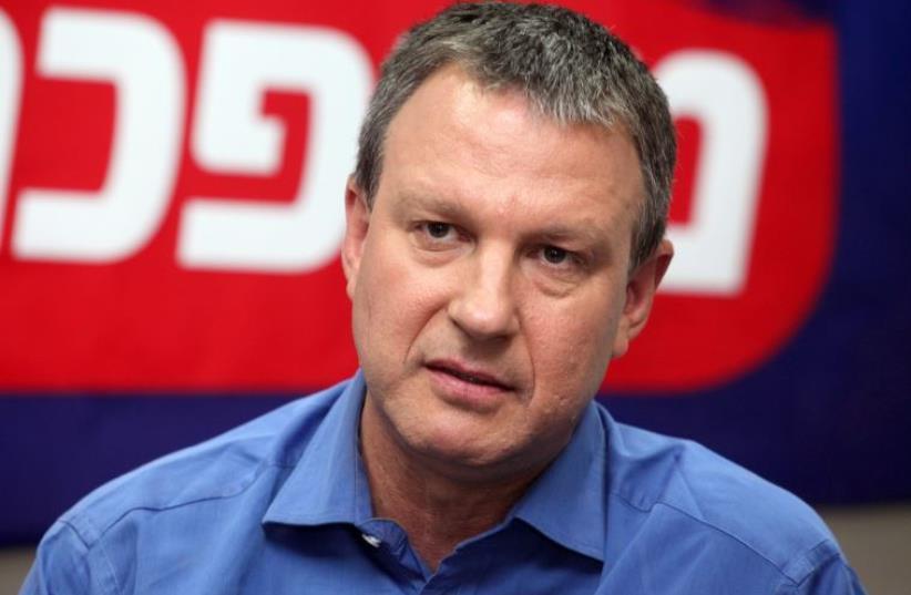Erel Margalit (photo credit: MARC ISRAEL SELLEM)