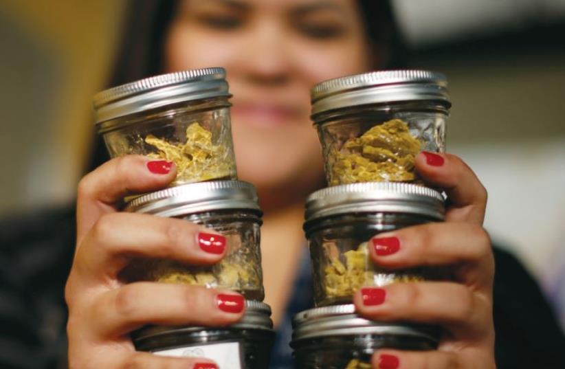 A woman holds jars of cannabis at a Los Angeles medical marijuana dispensary (photo credit: REUTERS)