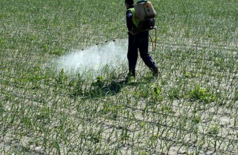Pesticides [illustrative] (photo credit: INGIMAGE)