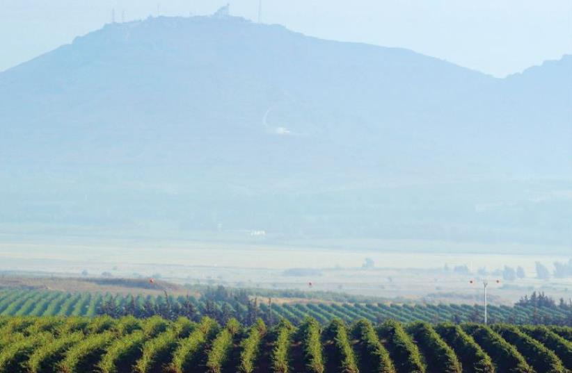A communications post is seen above a Golan Heights Wienry vineyard (photo credit: REUTERS)