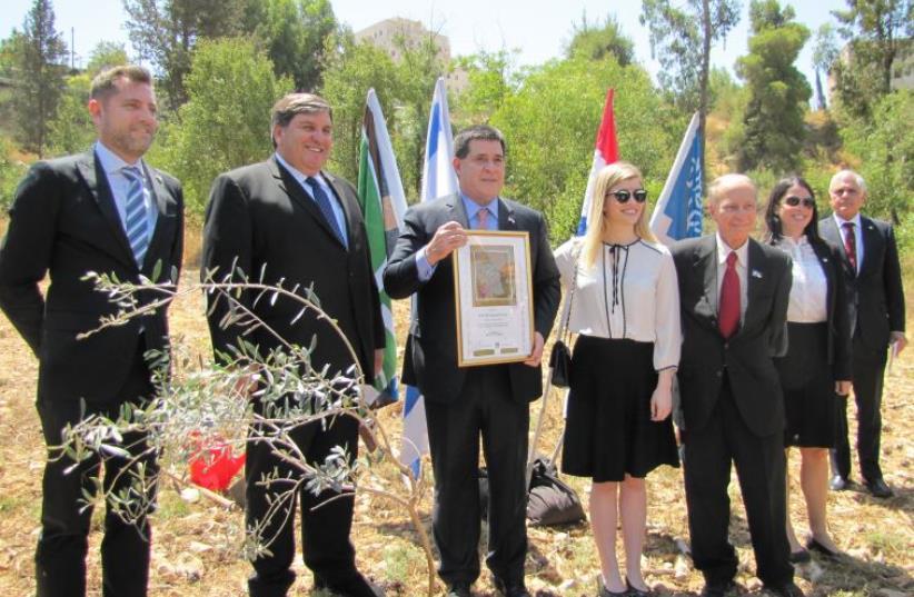 President of Paraguay Plants an Olive Tree in Jerusalem (photo credit: KKL-JNF)