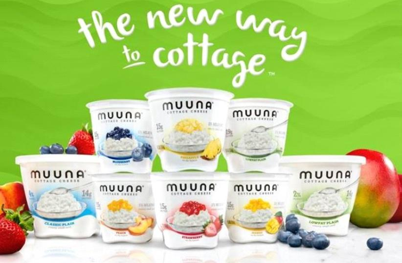 Tnuva's new American marketed cottage cheese (photo credit: TNUVA/FACEBOOK)