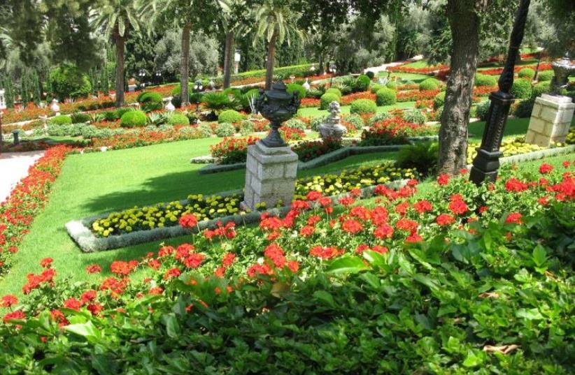 A fragrant garden (photo credit: Courtesy)