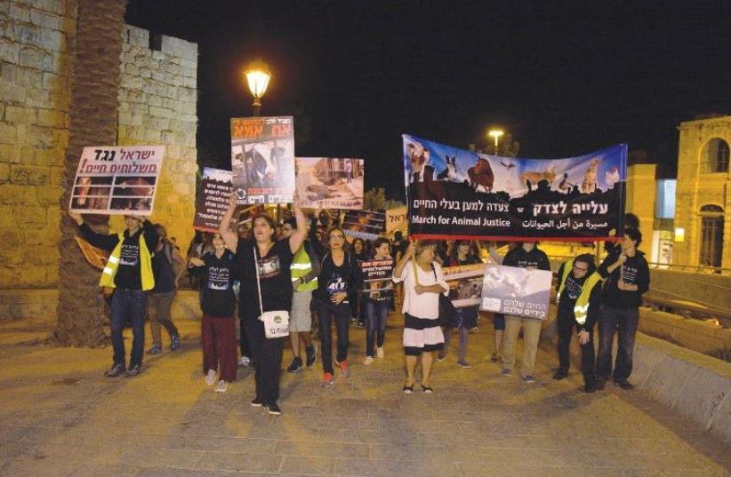 ANIMAL RIGHTS ACTIVISTS march by Jerusalem's Old City on Thursday. (photo credit: DAVID SHISH)