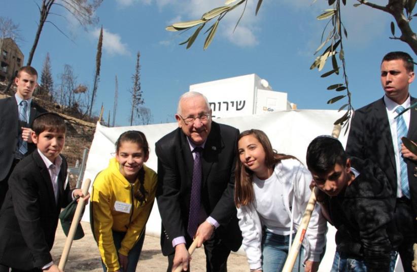 Tu BiShvat Ceremony with Israeli President Reuven Rivlin (photo credit: KKL-JNF)