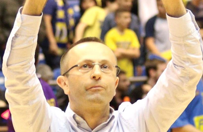 Hapoel Holo n coach Dan Shamir is the perfect man to take over the reins at Maccabi Tel Aviv, but the decision makers at the basketball club appear to be resisting that option for now. (photo credit: ADI AVISHAI)