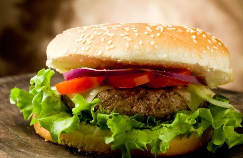 Hamburger (photo credit: INGIMAGE)