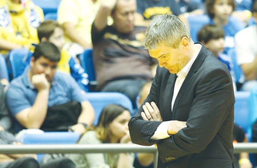 Ainars Bagatskis is set to guide Maccabi Tel Aviv in Wednesday's BSL game against Maccabi Ki-ryat Gat, with the club's ownership backtracking from its initial decision to fire him. (photo credit: ADI AVISHAI)