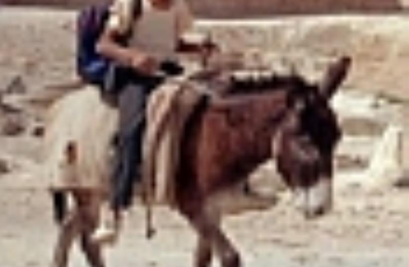 beduin child 88 ap (photo credit: AP)