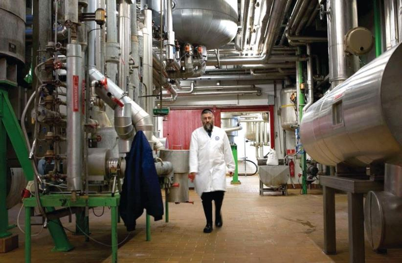 OU kashrut supervisor at work in a food manufacturing company (photo credit: COURTESY OF THE OU)