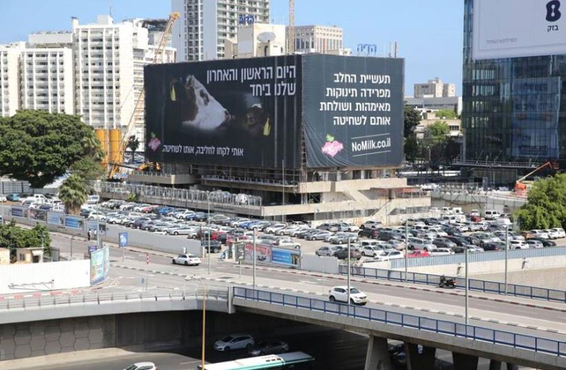 """A billboard in Tel Aviv aims to raise compassion for milk cows. (photo credit: """"VEGAN ACTIVE FACEBOOK PAGE"""")"""