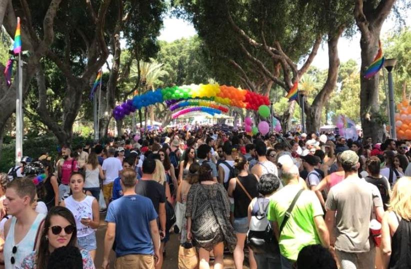 Tel Aviv Pride celebrations underway in Gan Meir park, June 9 2017 (photo credit: ELIYAHU KAMISHER)
