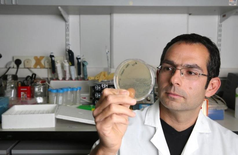 Dr. Zvi Hayouka. (photo credit: Courtesy)