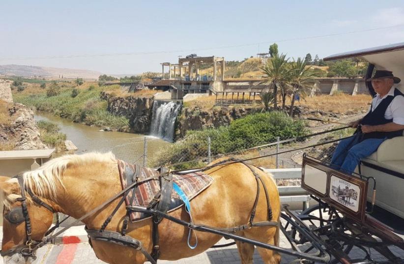 A HORSE-DRAWN carriage takes visitors through Naharayim Park. (photo credit: DORIT RITVO)