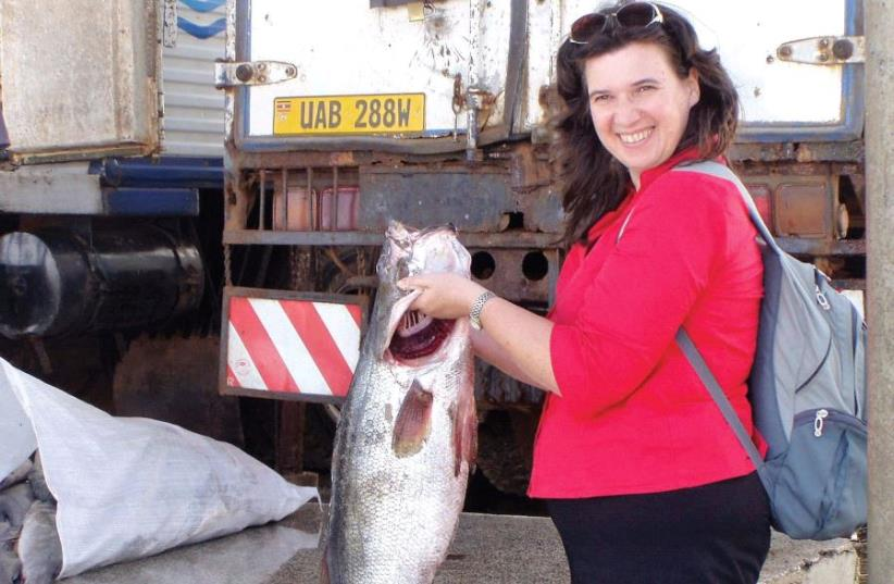 PRO F. BERT A LEVAVI-SIVAN shows the result of research on fish growth done at Hebrew University's Robert H. Smith Faculty of Agriculture, Food and Environment (photo credit: COURTESY HEBREW UNIVERSITY)