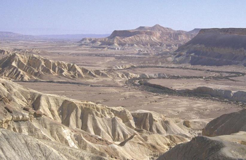 The Zin Desert (photo credit: MOSHE MILNER / GPO)