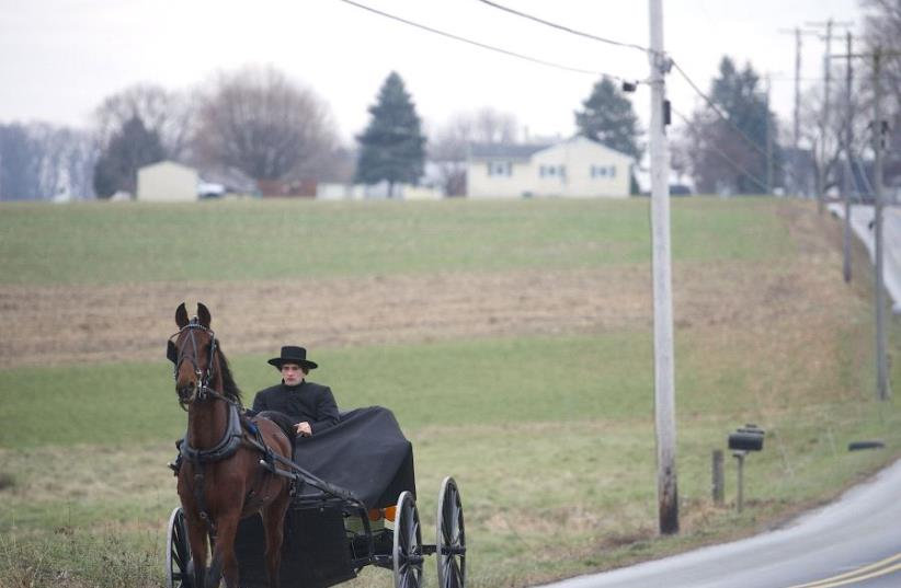 An Amish man and his horse in Pennsylvania (photo credit: MARK MAKELA)