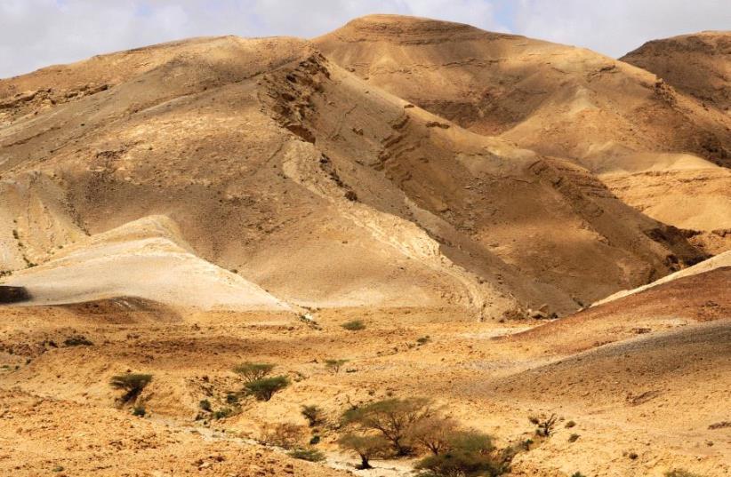 A desert in Israel (illustrative) (photo credit: MARK NEYMAN / GPO)