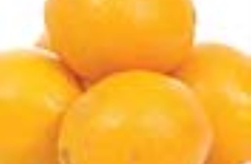 oranges 88 (photo credit: Courtesy)
