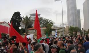 Yalla Peace: Stupid, stupid, stupid